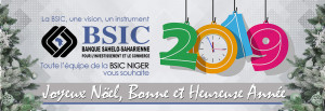 BSIC Niger Cover site web